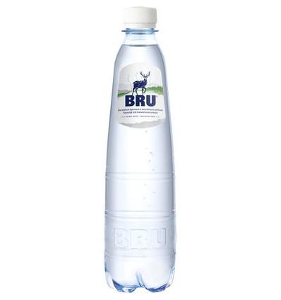 Bru eau pétillante 24 x 50cl
